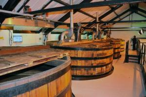 auchentoshan-distillery-washbacks