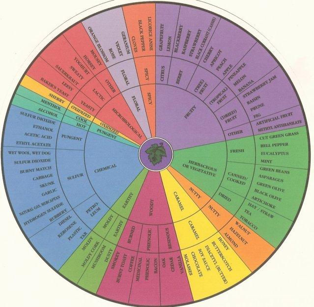 flavour wheel