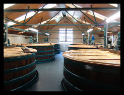 glenkinchie-distillery-washbacks