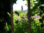 Campbeltown Church spire
