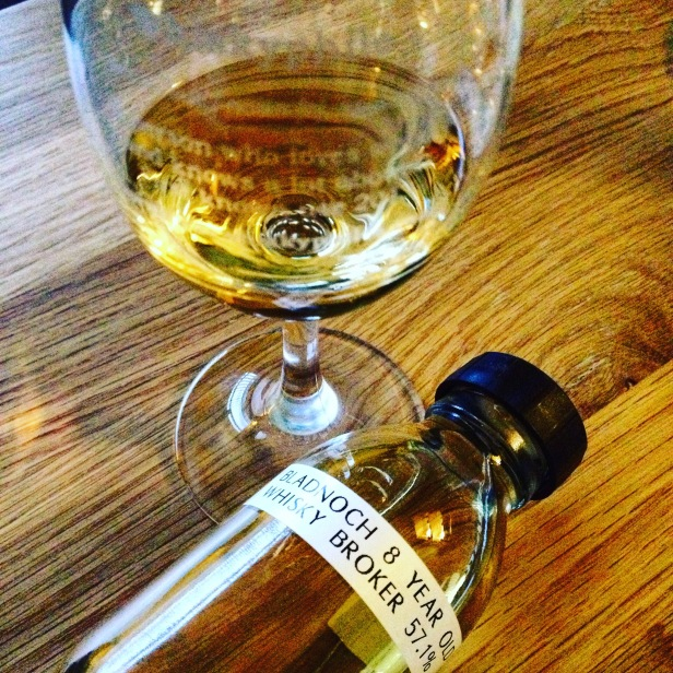 Bladnoch-8-Years-Old-2006-Whb