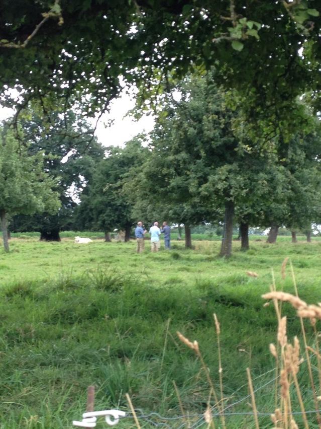 lemorton-orchard-visit