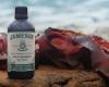 Jameson Seaweed Bitters atmos