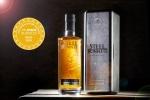 SB gold award